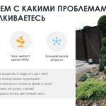 prezentacziya_2-avtopoliv-dlya-chastnikov-itog-ot-26.10-itog_page-0002-1536x864