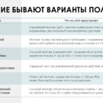 prezentacziya_2-avtopoliv-dlya-chastnikov-itog-ot-26.10-itog_page-0011-1536x864